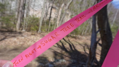 Pink ribbon marked the trail